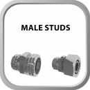 Male Studs